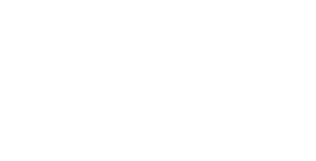 TTI Success Insights Brasil